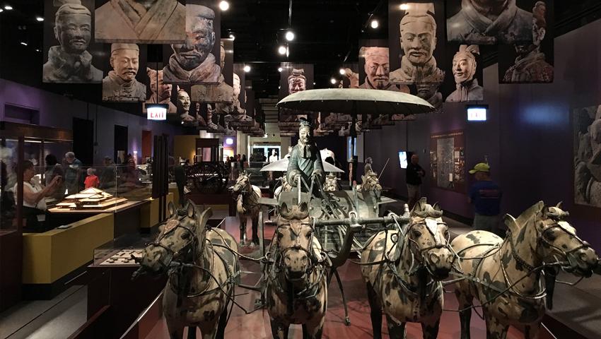 viagem real_field museum