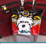 15 dicas de como arrumar a mala para viagem