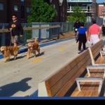 The 606: o parque horizontal de Chicago